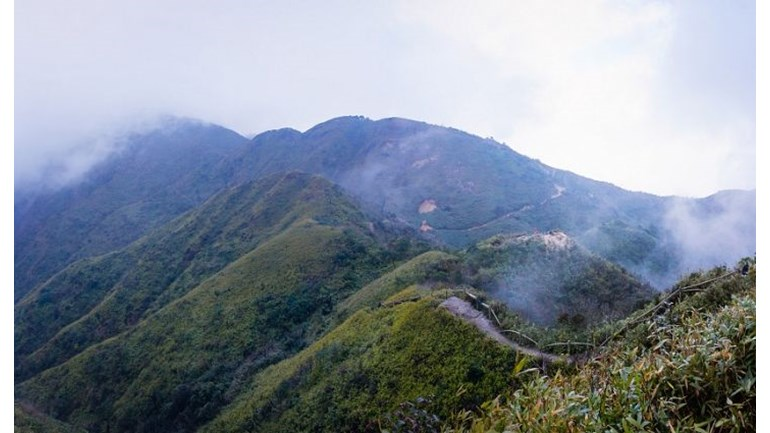 Learn more about Bari's climb in the Vietnamese mountains
