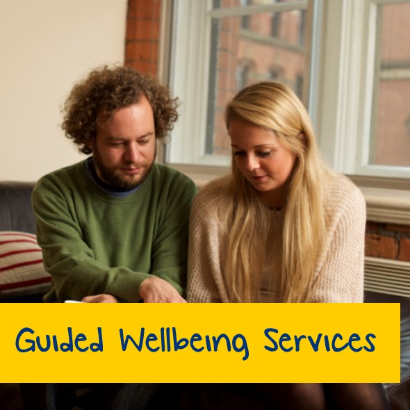 Guided Wellbeing Services