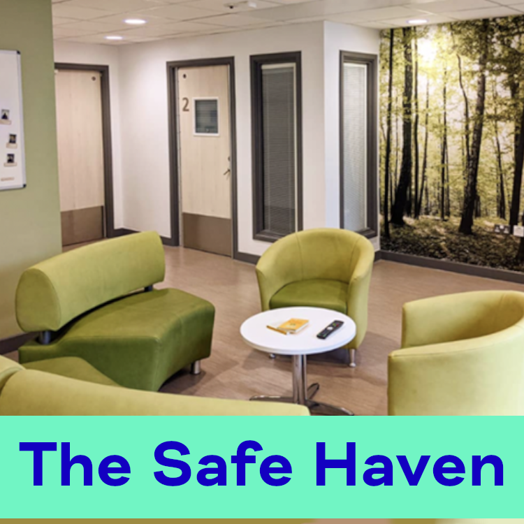 The Safe Haven