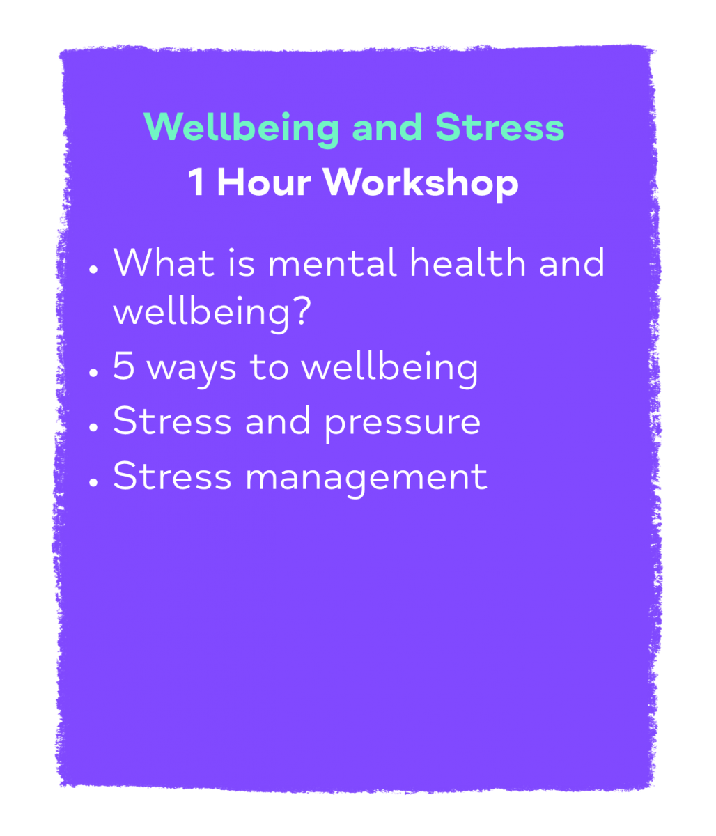 Wellbeing and Stress 1 Hour Workshop