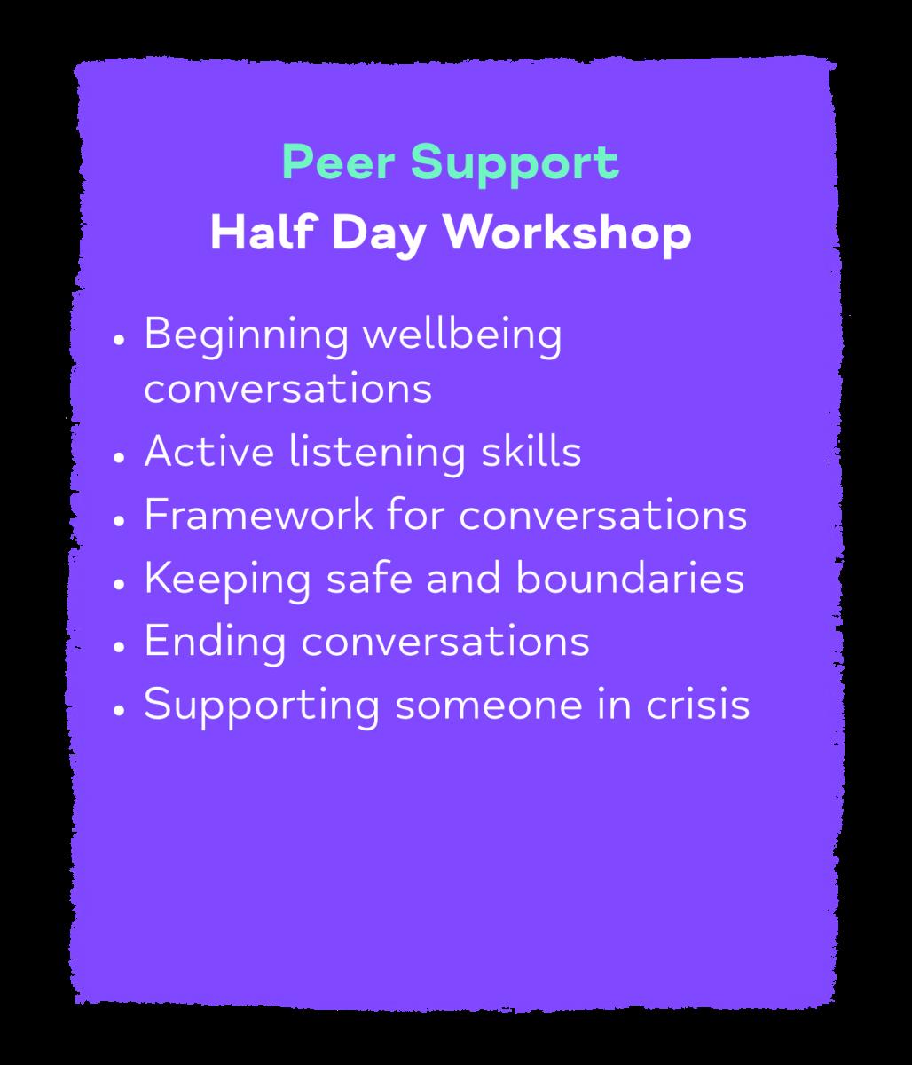 Peer Support Half Day Workshop